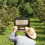 man listening to the radio outside in an orchard